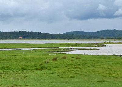 04_Landschaft-1507-02