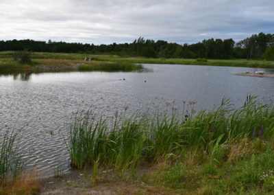 07_KalmarOelland-1507-01