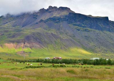 Snaesfellsnes Landschaft