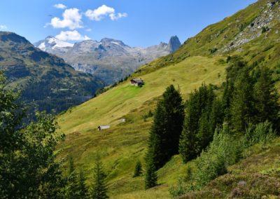 2019-08_Vals-Höhenweg-15